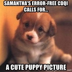 cute puppy - samantha's error-free cdqi calls for... a cute puppy picture