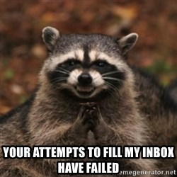 evil raccoon -  Your attempts to fill my inbox have failed