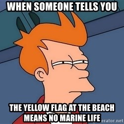 Futurama Fry - when someone tells you  the yellow flag at the beach means no marine life