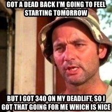 Bill Murray Caddyshack - got a dead back I'm going to feel starting tomorrow but i got 340 on my deadlift, so i got that going for me which is nice