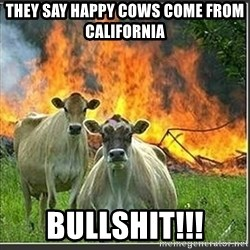 Evil Cows - They say happy cows come from california bullshit!!!