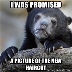 Confession Bear - I was promised A picture of the new haircut