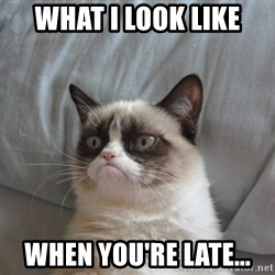 Grumpy Cat  - What I look like When you're late...