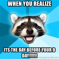 Lame Pun Coon - when you realize its the day before your d day!!!!!!