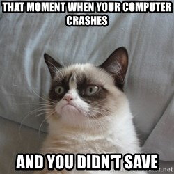 Grumpy Cat  - That moment when your computer crashes and you didn't save
