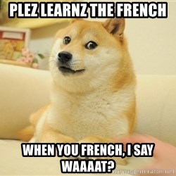 so doge - Plez Learnz The French When YOu french, I SAy WAAAAT?
