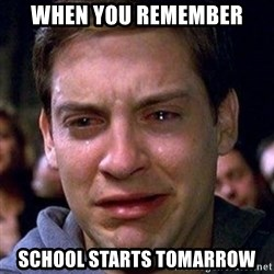 spiderman cry - When you remember School starts tomarrow