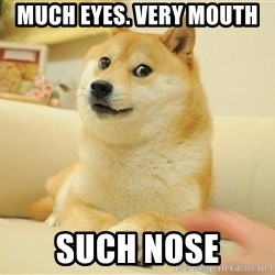 so doge - much eyes. very mouth such nose