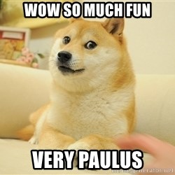 so doge - WOW SO MUCH FUN VERY PAULUS