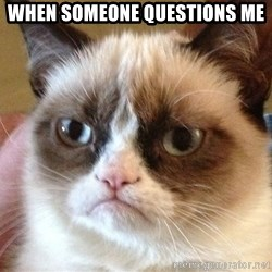 Angry Cat Meme - When someone questions me