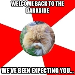 Diabetic Cat - wELCOME BACK TO THE dARKSIDE wE'VE BEEN EXPECTING YOU...