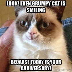 Happy Grumpy Cat 2 - Look! Even Grumpy Cat is Smiling Because Today is your Anniversary!