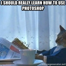 newspaper cat realization - I should really learn how to use photoshop