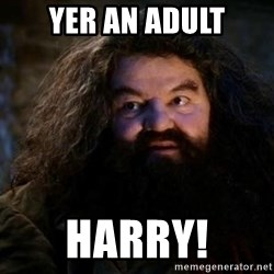 Yer A Wizard Harry Hagrid - Yer an Adult harry!
