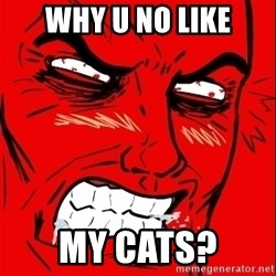 Rage Face - why u no like my cats?