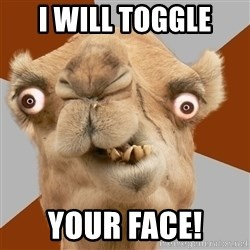 Crazy Camel lol - i will toggle your face!