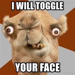 Crazy Camel lol - I will toggle YOUR FACE