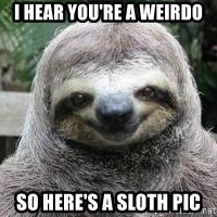 Sexual Sloth - I hear you're a weirdo So here's a sloth pic