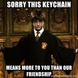 Harry Potter Come At Me Bro - Sorry this keychain Means more to you than our friendship