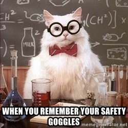 Science Cat - when you remember your safety goggles