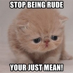 Super Sad Cat - stop being rude your just mean!