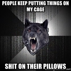 Insanity Wolf - People Keep putting things on my cage  Shit on their pillows