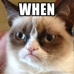 Angry Cat Meme - when