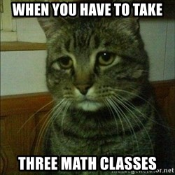 Depressed cat 2 - When you have to take Three math classes