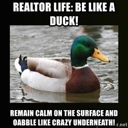 good advice duck - Realtor Life: Be like a dUck! Remain calm on the surface and oabble like crazy underneaTh!