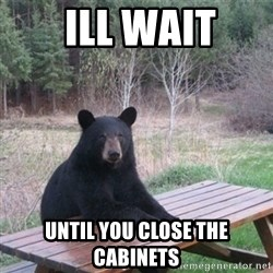 Patient Bear - ill wait until you close the cabinets