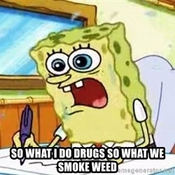 Spongebob What I Learned In Boating School Is -  So what i do drugs so what we smoke weed