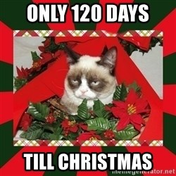 GRUMPY CAT ON CHRISTMAS - Only 120 days  Till CHRISTMAS