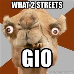 Crazy Camel lol - What 2 streets Gio