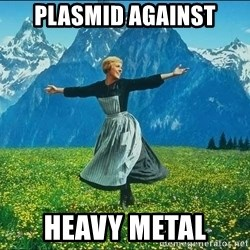 Look at all the things - Plasmid Against Heavy metal