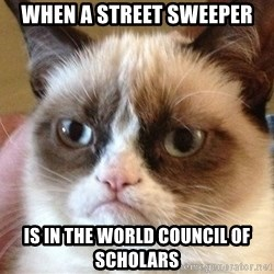 Angry Cat Meme - When a street sweeper is in the world council of scholars