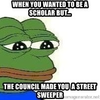 Sad Frog - when you wanted to be a scholar but... the council made you  a street sweeper
