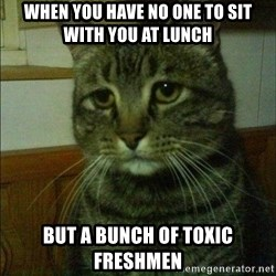 Depressed cat 2 - When you have no one to sIt with you at lunch But a bunch of toxic freshmen