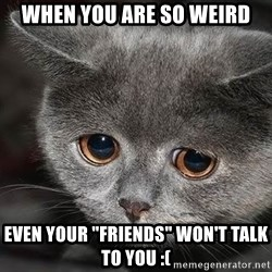 "sad cat - when you are so weird even your ""friends"" won't talk to you :("