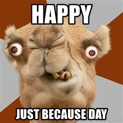 Crazy Camel lol - HAPPY JUST BECAUSE DAY