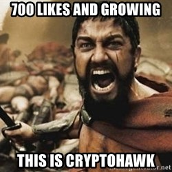 300 - 700 likes and growing this is cryptohawk