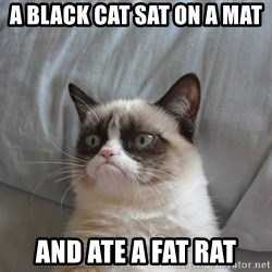 Grumpy cat 5 - A black cat sat on a mat  and ate a fat rat
