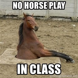 Hole Horse - no horse play in class
