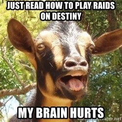 Illogical Goat - Just read how to play raids on Destiny My brain hurts