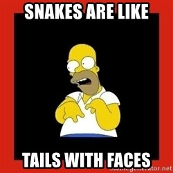 Homer retard - snakes are like tails with faces