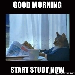 i should buy a boat cat - good mORNING Start study now