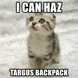 Can haz cat - I can haz Targus backpack