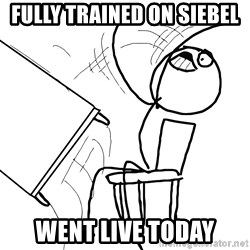 Desk Flip Rage Guy - Fully Trained on Siebel Went Live today