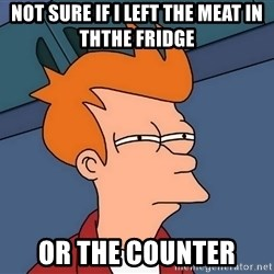 Futurama Fry - Not sure if i left the Meat in ththe fridge  Or the counter