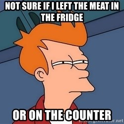 Futurama Fry - Not sure if i left the meat in the fridge  OR on the counter