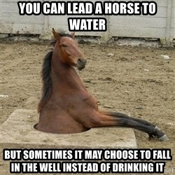 Hole Horse - you can lead a horse to water but sometimes it may choose to fall in the well instead of drinking it